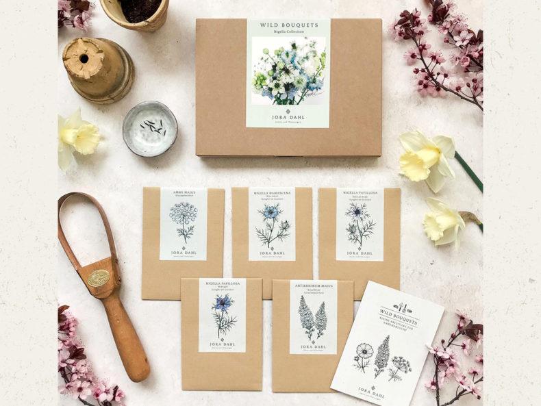 Jora Dahl Blumensamen kaufen Berlin