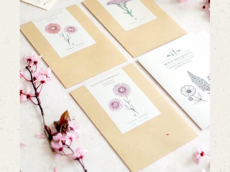 Jora Dahl Blumensamen Strohblume Salmon Rose