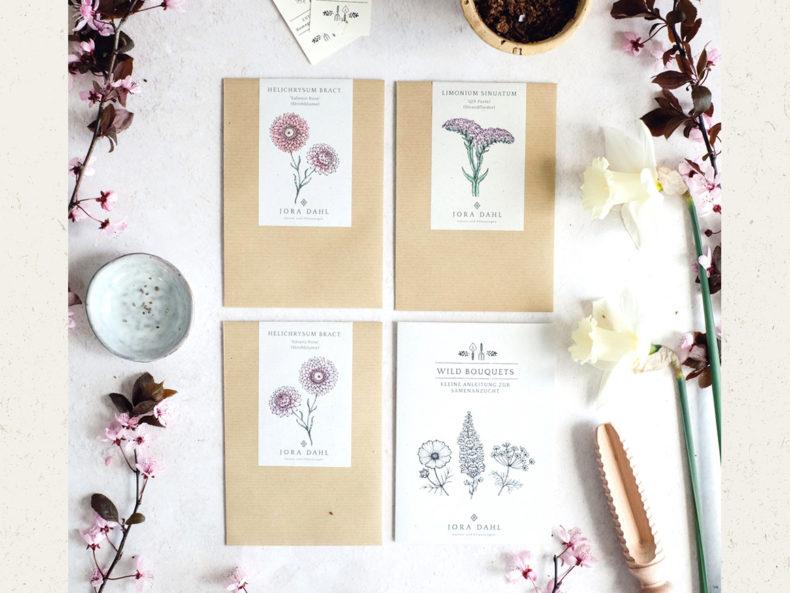 Jora-Dahl-Blumensamen-Strohblume-Silvery-Rose