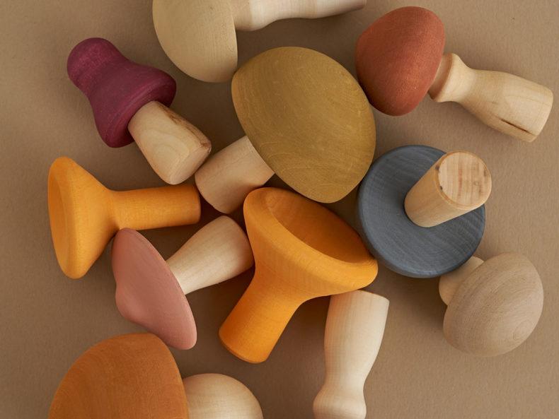 Raduga Grez Mushrooms Set